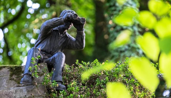 Spielfigur die durch Ferngläser schaut und in einer Hecke getarnt ist